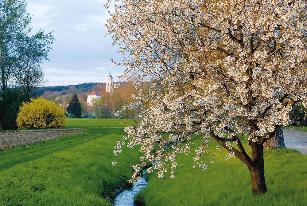 Bad Birnbach im Frühling
